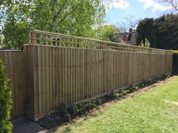 Close board fencing with trellis (1)