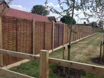 Willow panel fencing