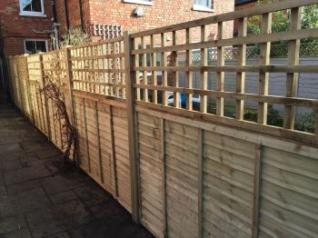 Panel fencing with trellis