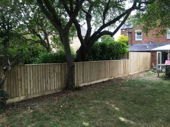 Close board fencing (15)