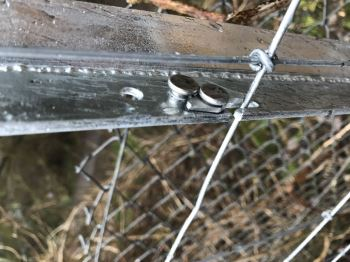 Clipex deer fencing (2)