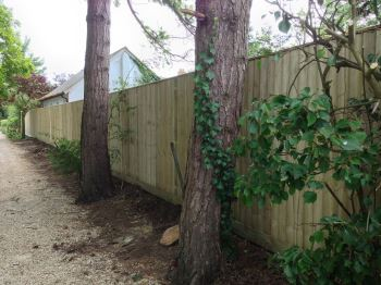 Close board fencing (3)