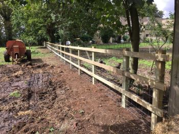 Post and rail fencing with rabbit net