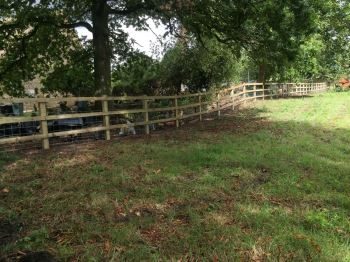 Post and rail fencing with stock net