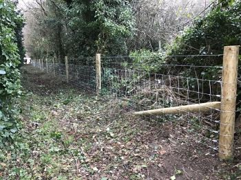 Stock fencing with barbed wire (3)