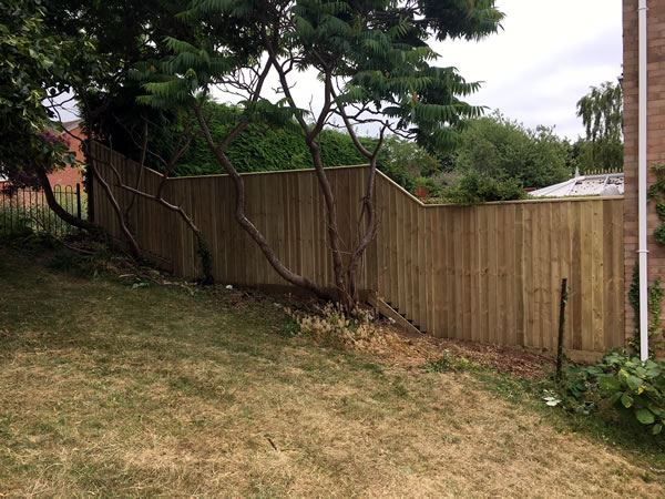 Close board fencing for a back garden in Abingdon
