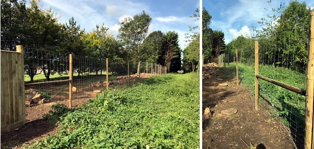 Deer fencing in Bicester, Oxfordshire