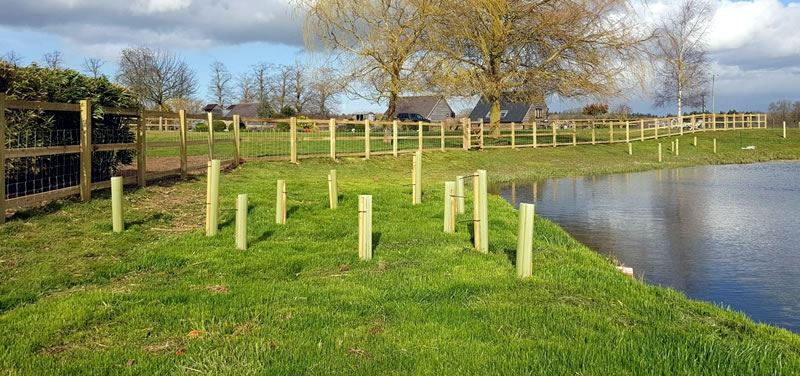 Post and rail fencing by lake