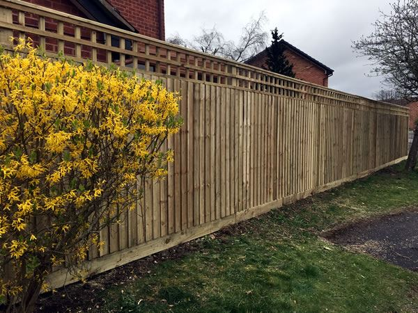 Trellis fencing in an Abingdon garden