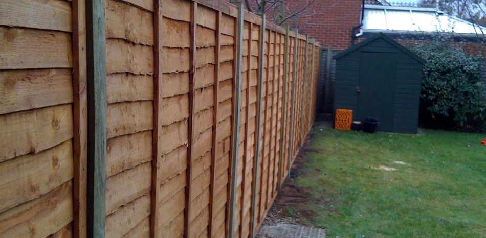 Larch lap fence panel