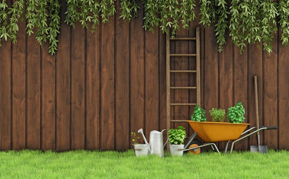 garden fence. Garden Fence